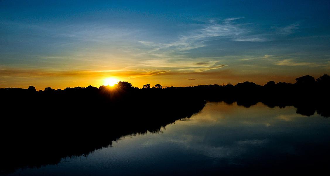 Pantanal-MS