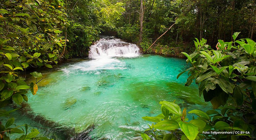 Ecoturismo: conheça os principais destinos no Brasil