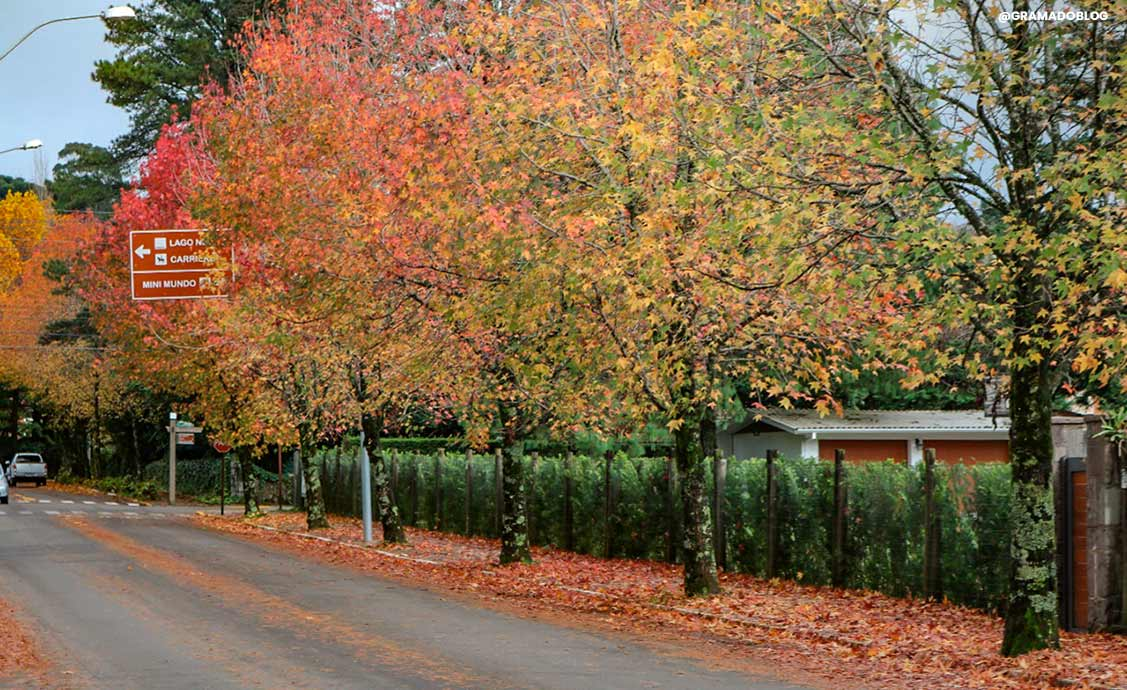 Outono-na-Serra