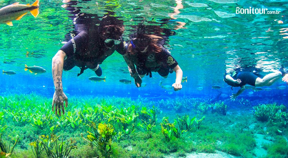 Como começou o ecoturismo, principais diferenciais e destinos