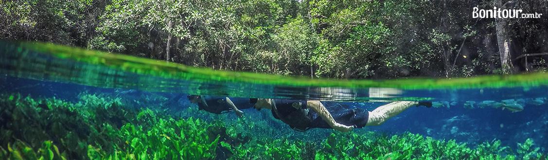 Aquário Natural Flutuação