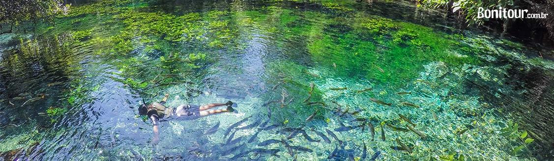 Entenda_por_que_visitar_o_Aquário_Natural_de_Bonito