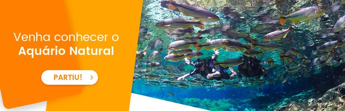 conheca_o_aquario_natural