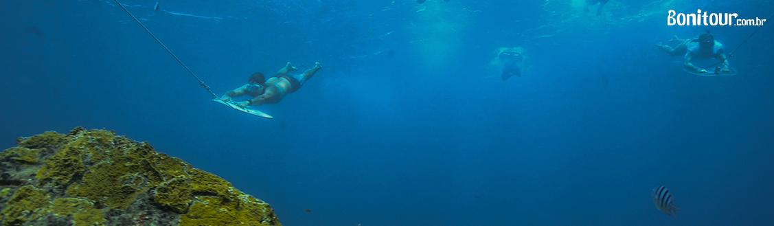 mergulho_em_fernando_de_noronha_planasub