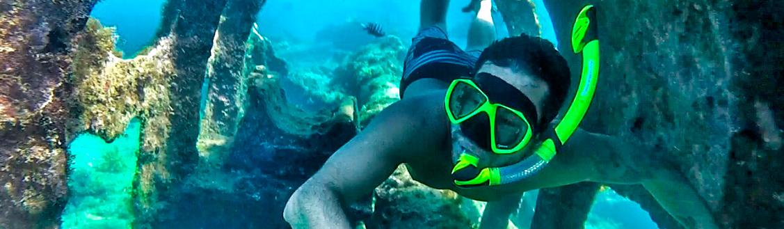 mergulho_em_fernando_de_noronha_snorkeling