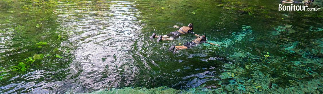 visite_bonito_ms__em_fevereiro_aquario