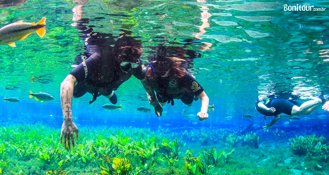 o_que_e_flutuacao_aquario_natural