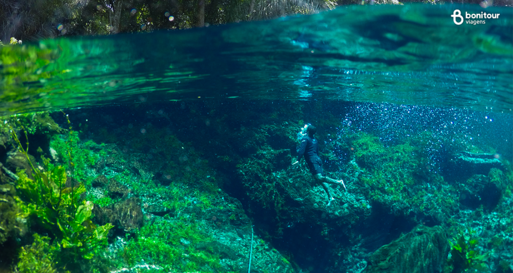 pantanal-bonito