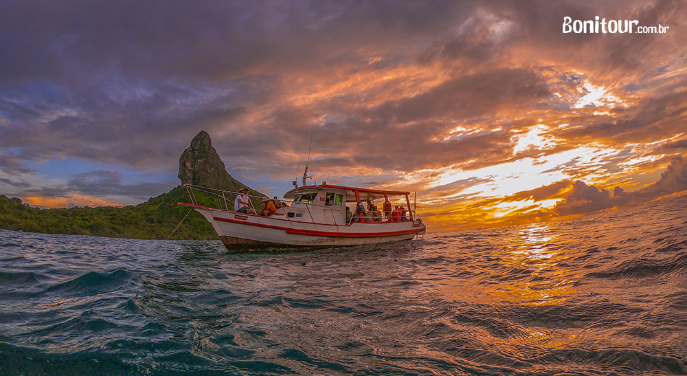 Passeios de barco em Fernando de Noronha