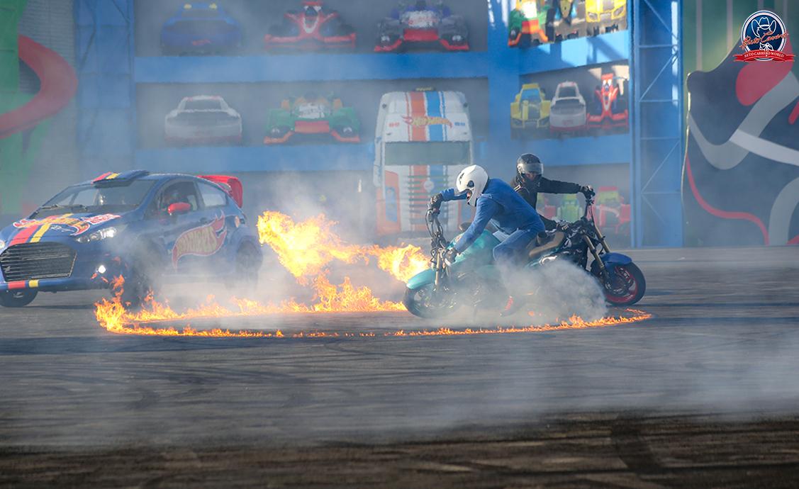 show-hot-wheels