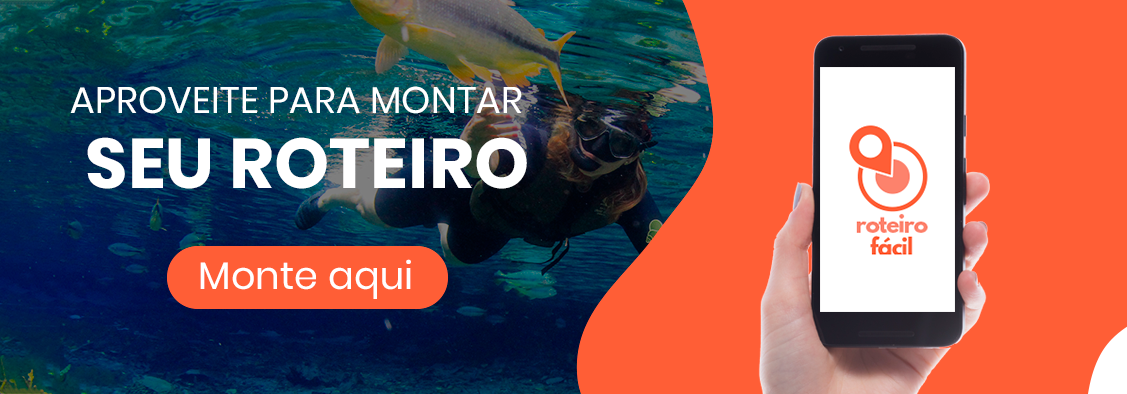Monte_seu_roteiro_aqui