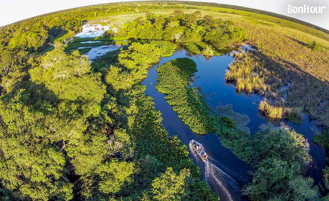 imagem-pantanal