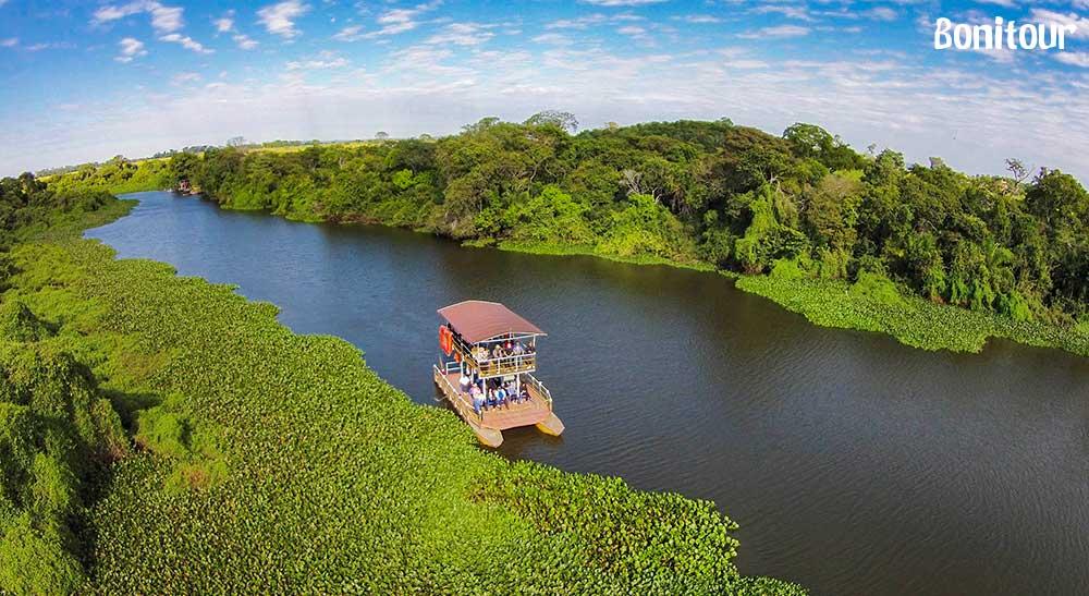 Curiosidades sobre o Pantanal: o paraíso do ecoturismo brasileiro