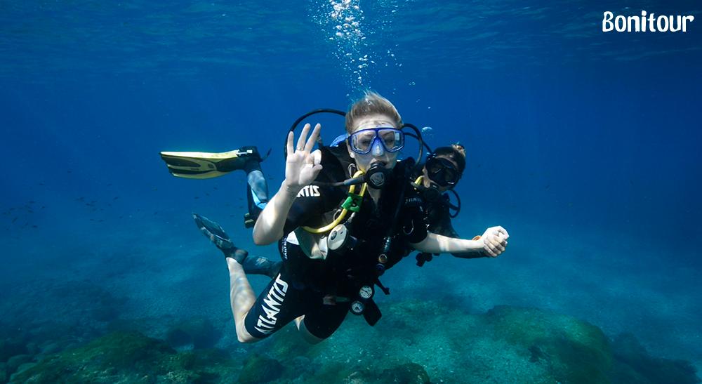 Confira os 4 melhores lugares para praticar mergulho no Brasil