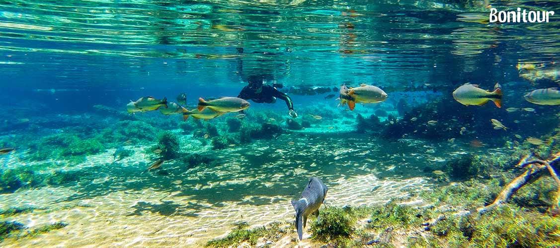 rio-da-prata-flutuação