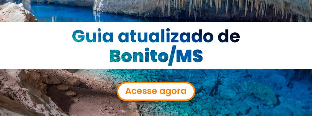 guia_atualizado_bonito_ms