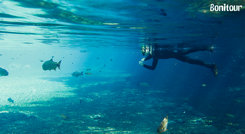 De trilhas a flutuação em águas cristalinas: saiba tudo sobre o Rio da Prata