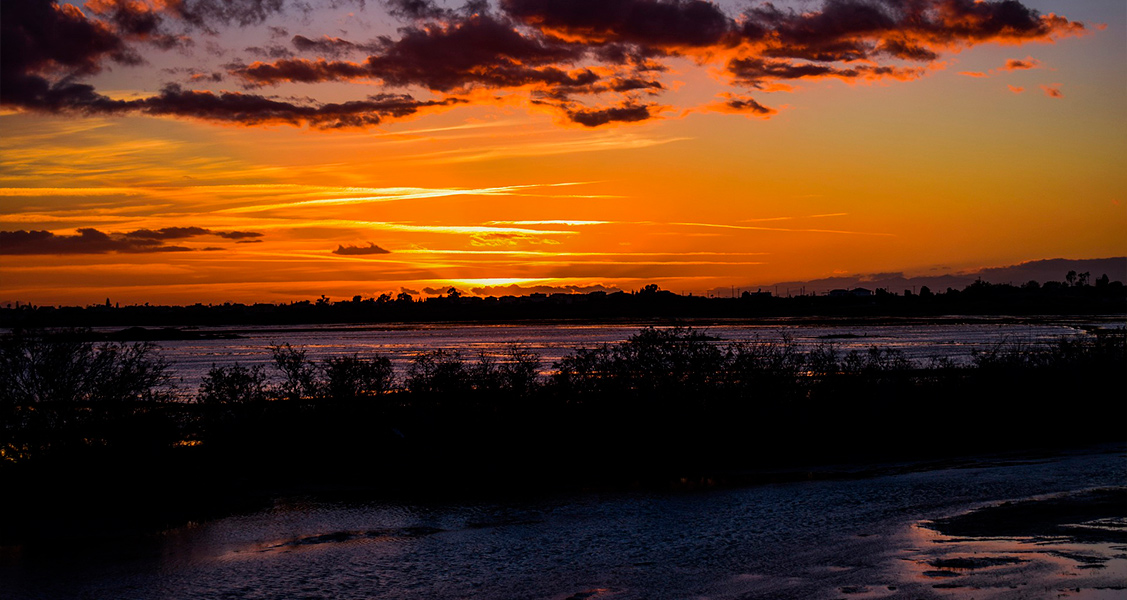 Pantanal/MT e MS
