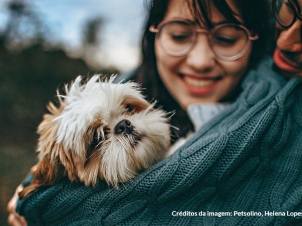 Viagem com pets: dicas para viajar com o seu melhor amigo de carro ou avião
