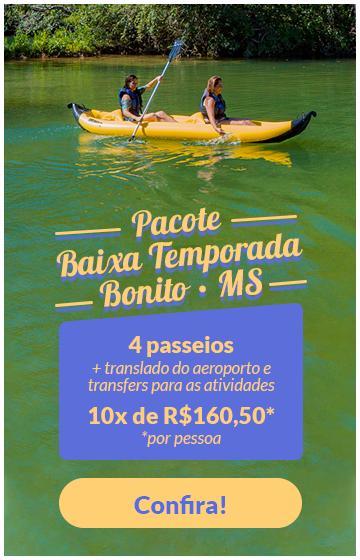 banner_baixa_temporada_com_transporte