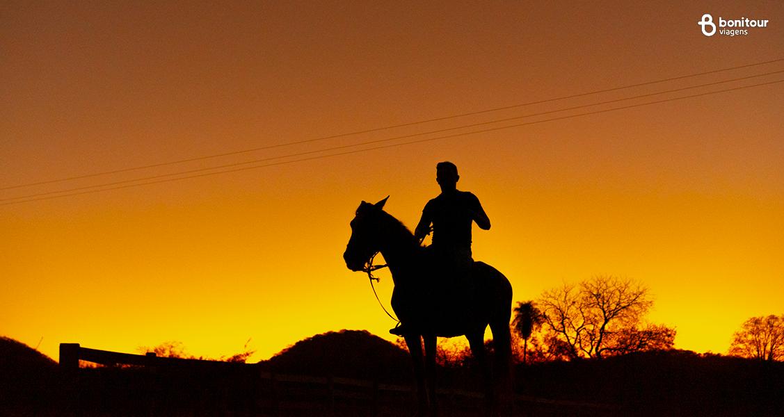 Cavalgada do Peão Noturna