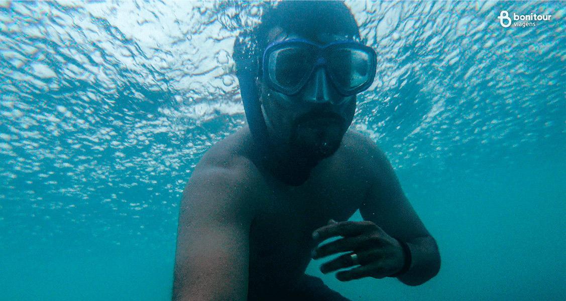 Mergulho de Snorkeling em Fernando de Noronha/PE